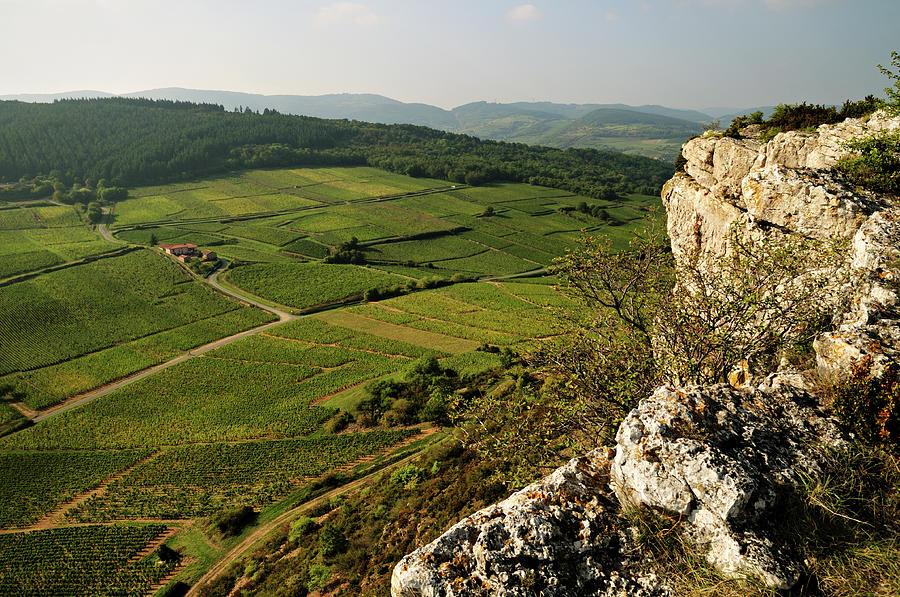 Rock Of Vergisson - Burgundy Photograph by © Pascal Boegli