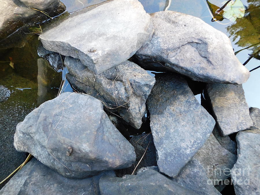 Rock Pile by Barbra Telfer
