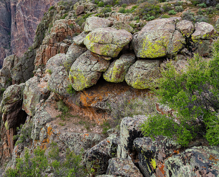 Rocks and Lichen by Lisa Malecki
