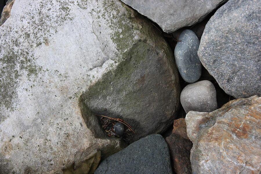 Nature Photograph - Rocks by David Wilde