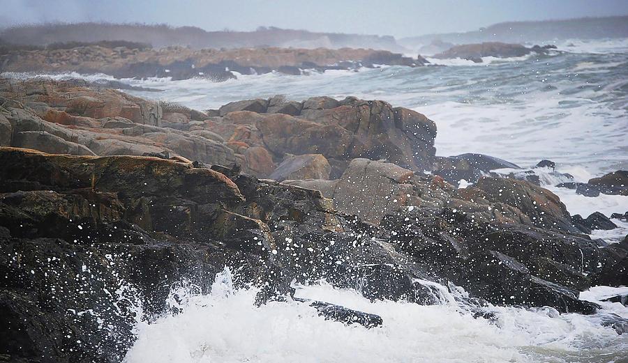 Rocky Coast, Maine Photograph by Ali Bailey