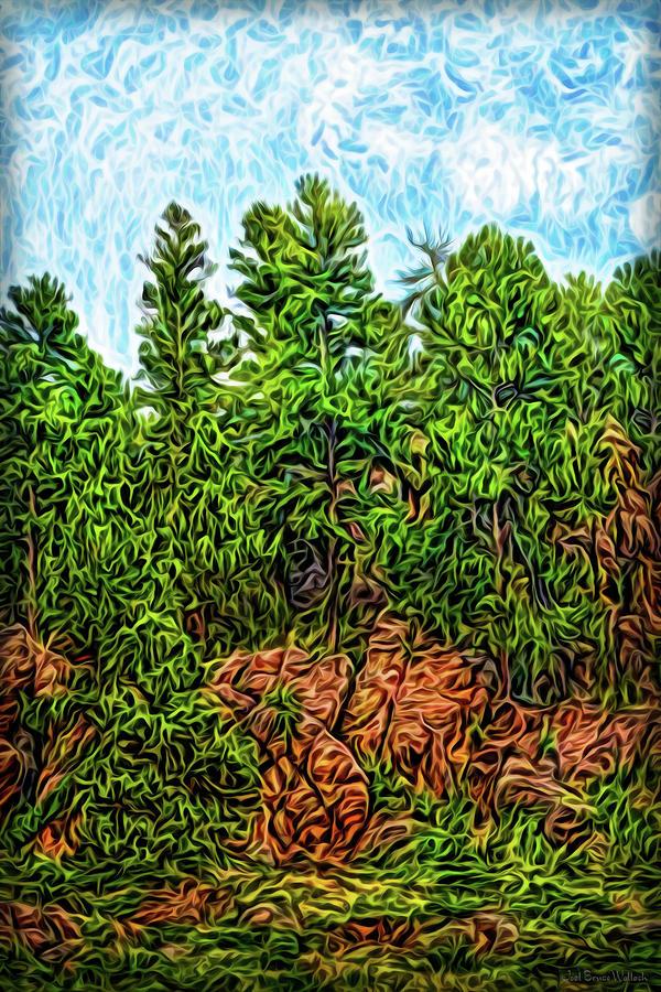 Rocky Forest Light by Joel Bruce Wallach