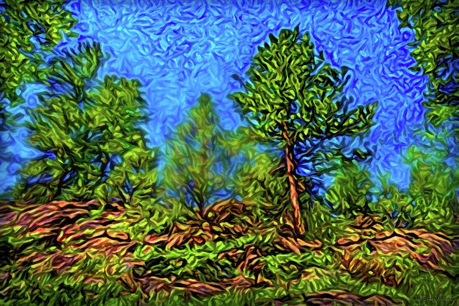 Rocky Green Woods by Joel Bruce Wallach