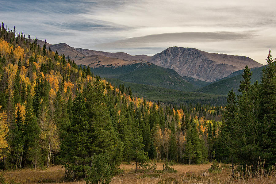 Rocky Mountain Autumn by Darlene Bushue