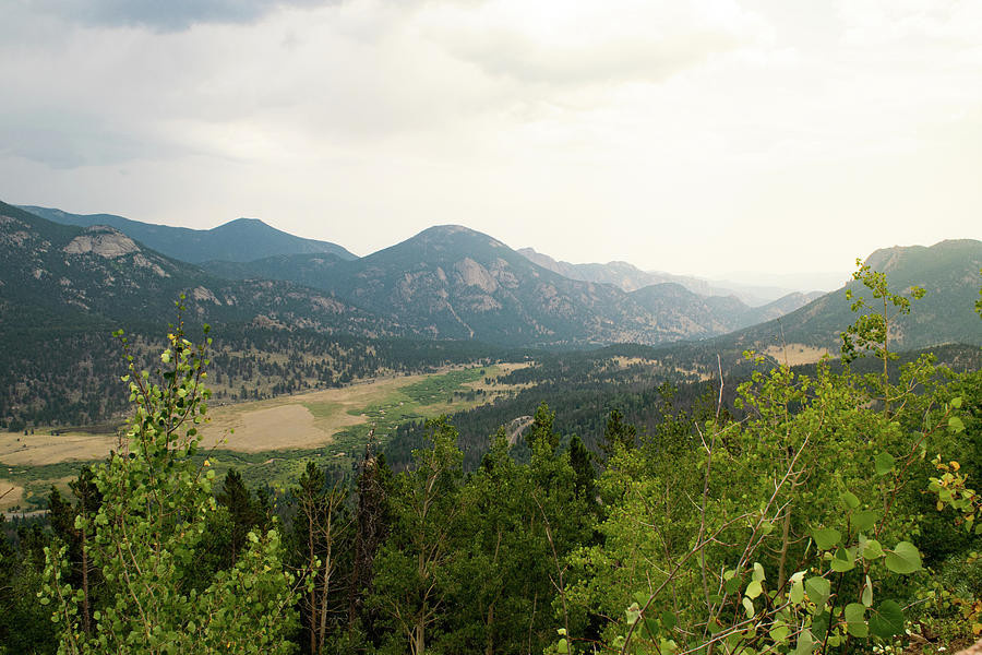 Rocky Mountain Overlook by Nicole Lloyd