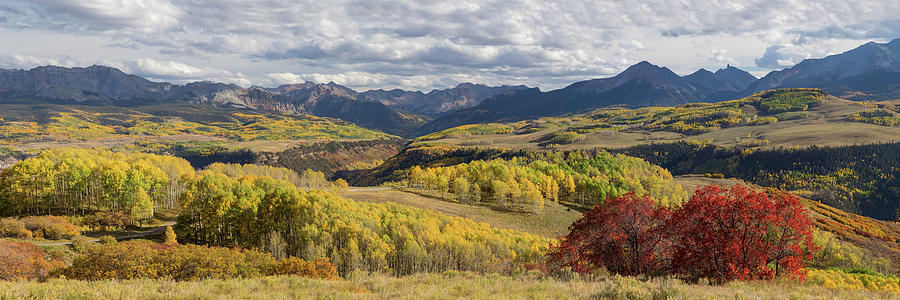 Ridgeway Photograph - Rocky Mountain Valley Of Color Panoramic View by James BO Insogna