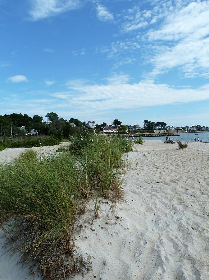 Rocky Neck State Park Beach by Toni Leland