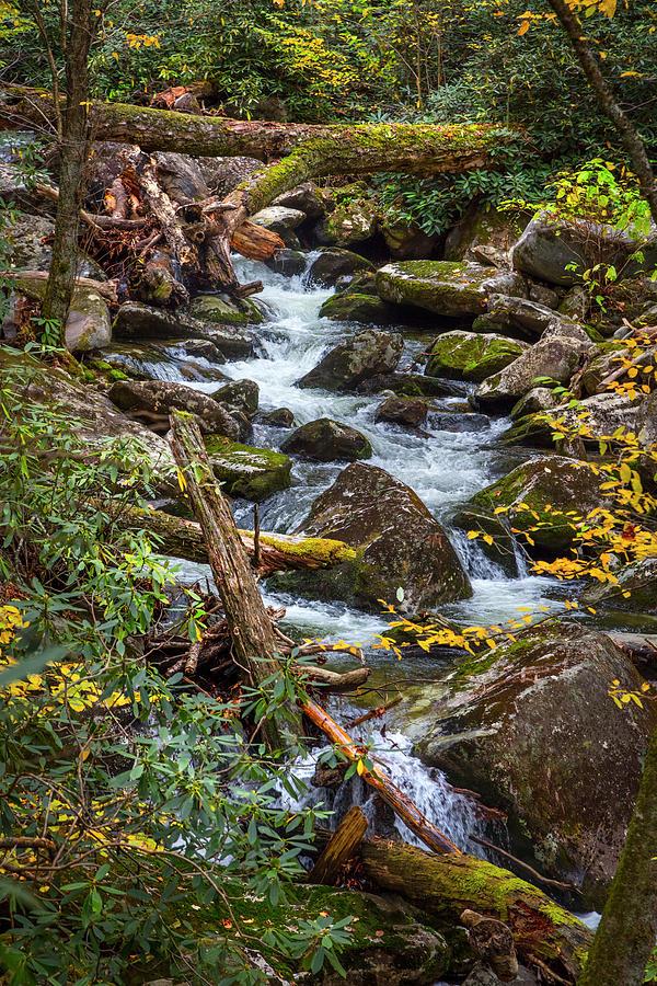 Rocky Stream