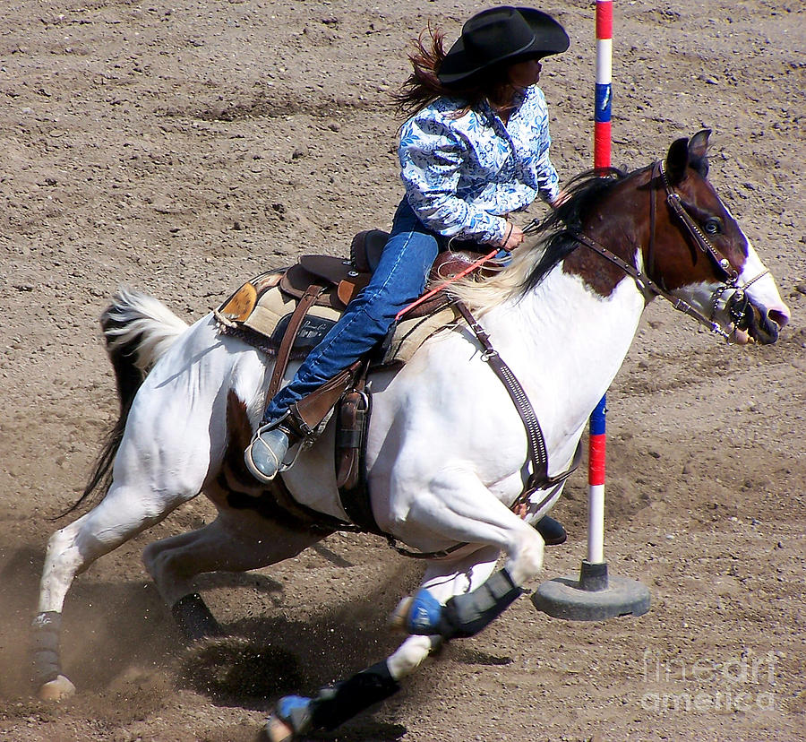 Equestrian Photograph - Rodeo Series by Ron Hilton