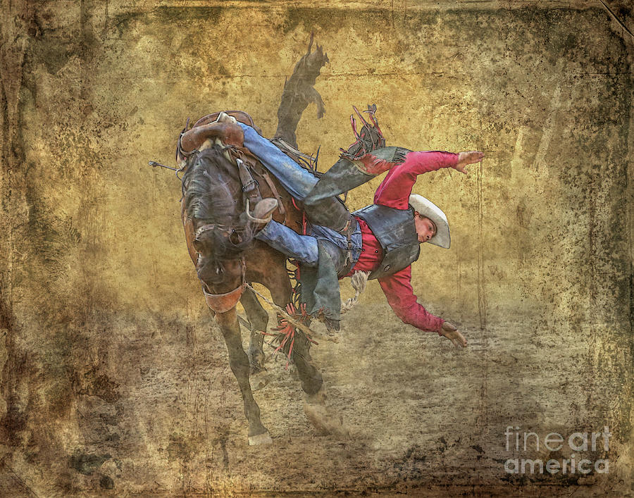 Rodeo The Fall by Randy Steele