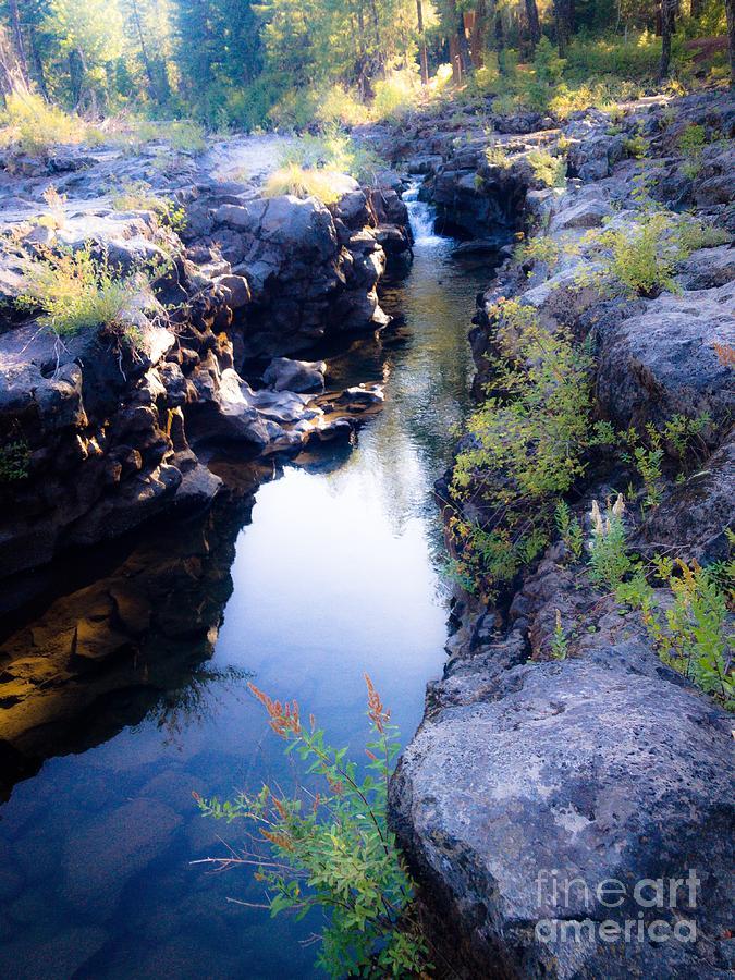 Rogue River Gorge Photograph