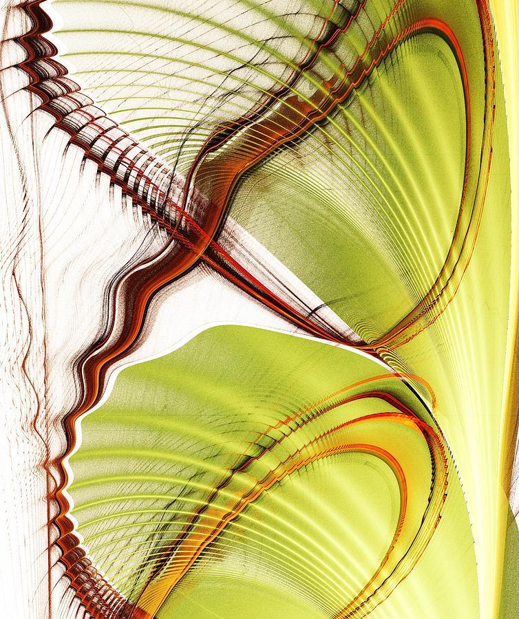 Roller Coaster of Life by Anastasiya Malakhova