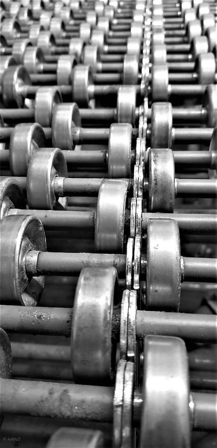 ROLLERS 4 by Rob Hans