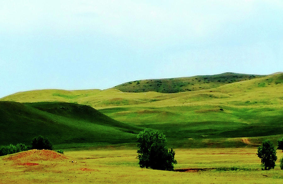 Rolling Green Hills by Melinda Firestone-White
