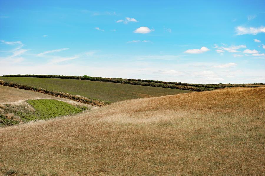 Rolling Hills ii by Helen Northcott