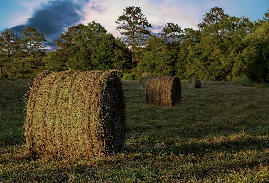Rolls of Hay in Golden Hour by Darryl Brooks