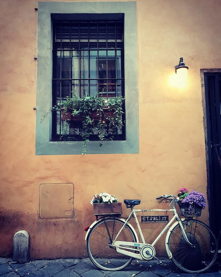Roman Bike by Andrea Whitaker
