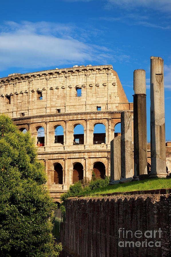 Roman Coliseum II by Brian Jannsen