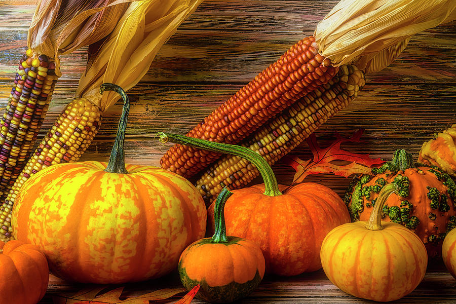 Pumpkins Photograph - Romantic Autumn Still Life by Garry Gay