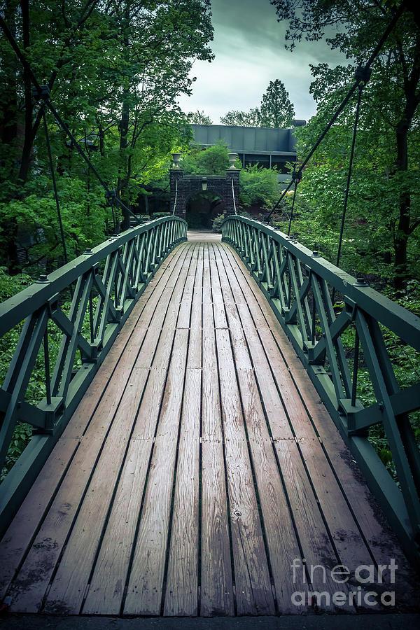 Romantic Kissing Bridge by Colleen Kammerer
