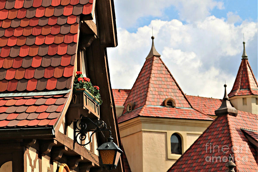 Roof Lines And Flower Boxes by Diann Fisher