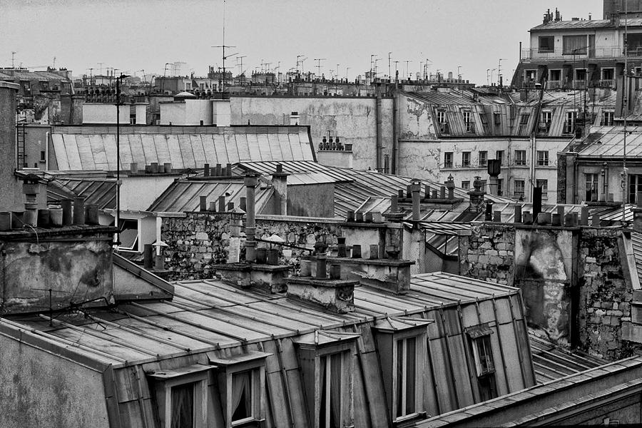 Roofs of Paris by picturetom