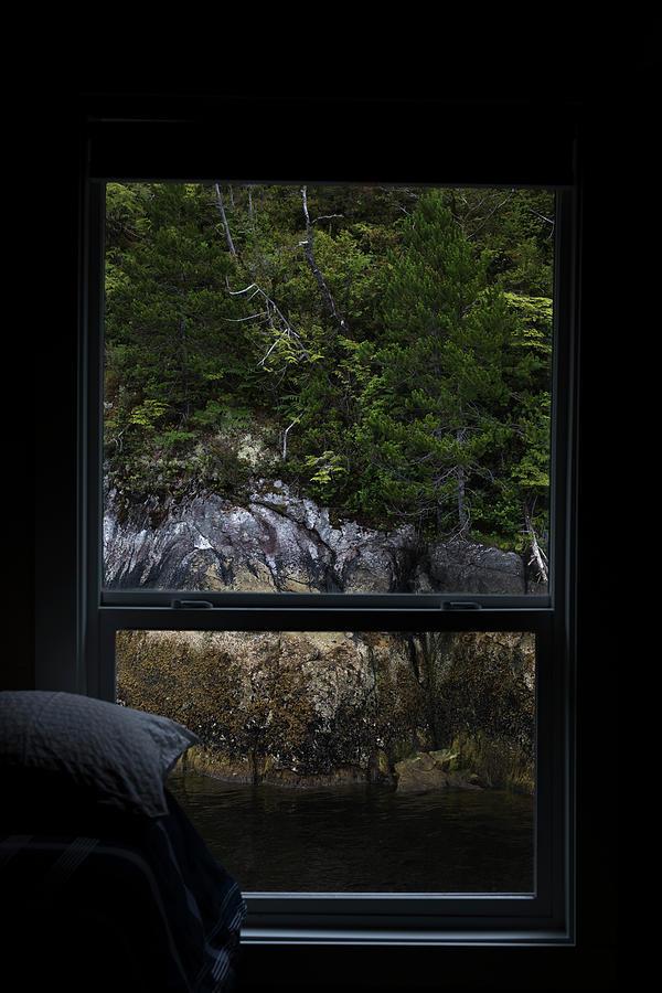 Tofino Photograph - Room With A View Of The Tofino Inlet by Cavan Images