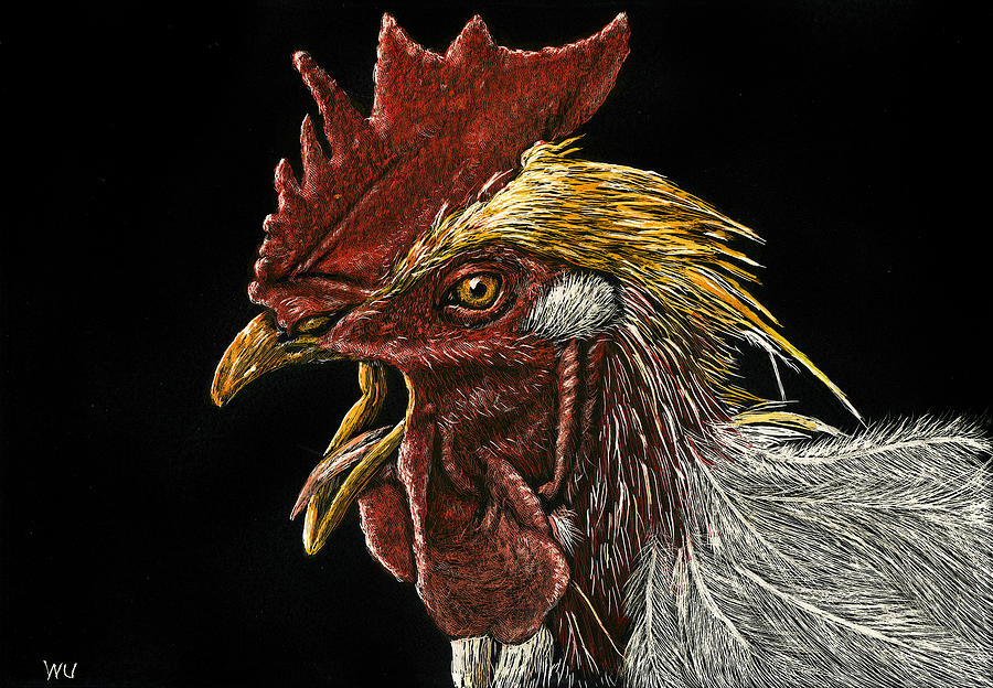 Rooster by William Underwood