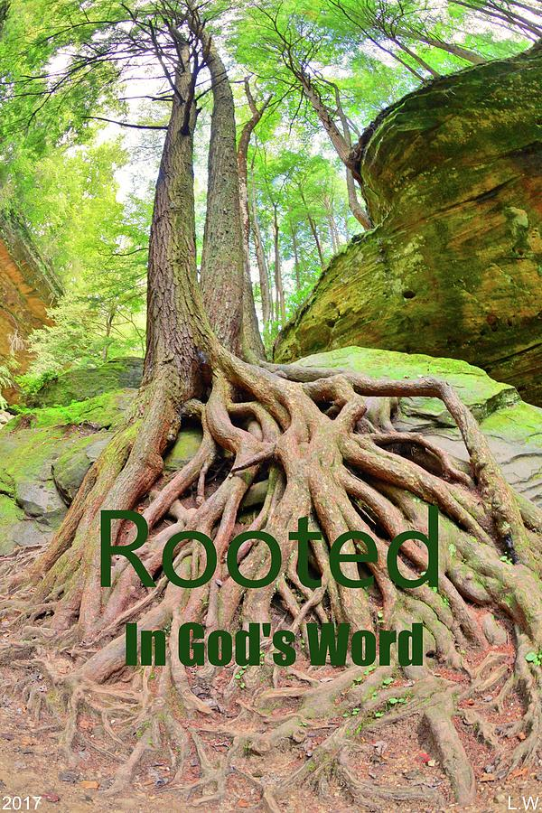 ROOTED In GOD'S Word by Lisa Wooten