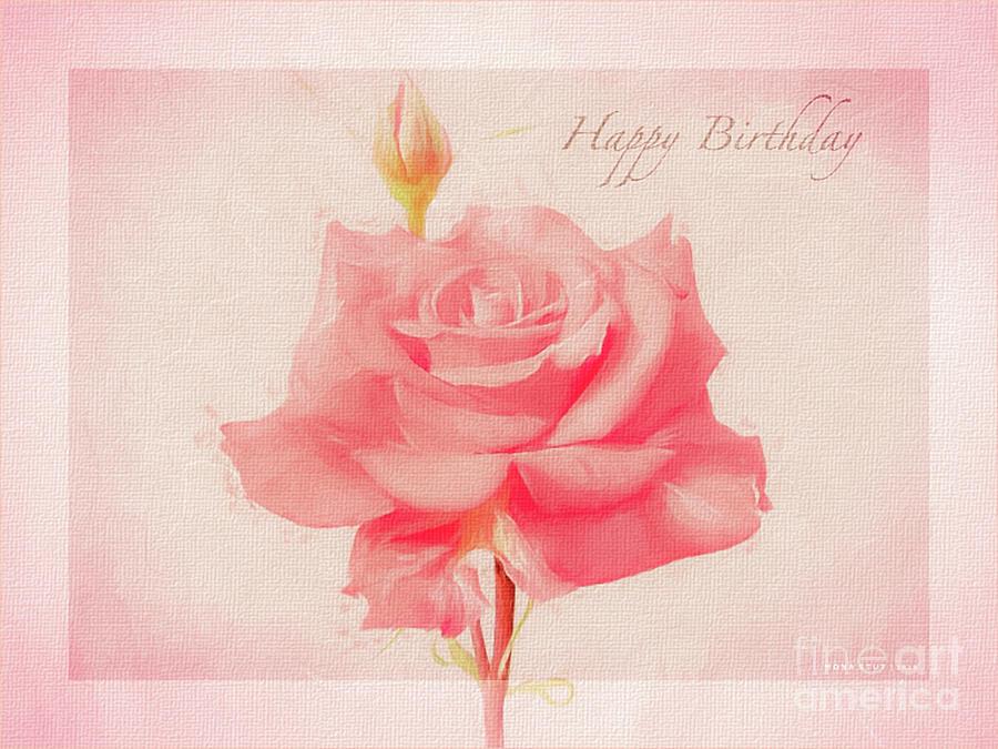 Rosalina Soft Pink Happy Birthday Roses Photograph