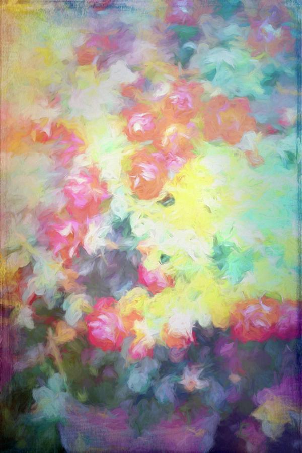 Rose 393 by Pamela Cooper