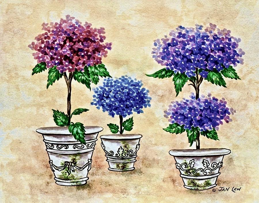 Rose, Blue, Purple Hydrangea Topiaries by Jan Law