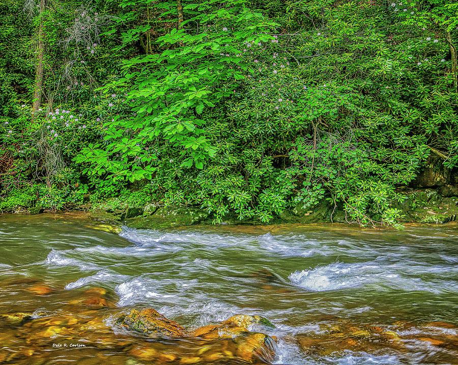 Rosebay River by Dale R Carlson