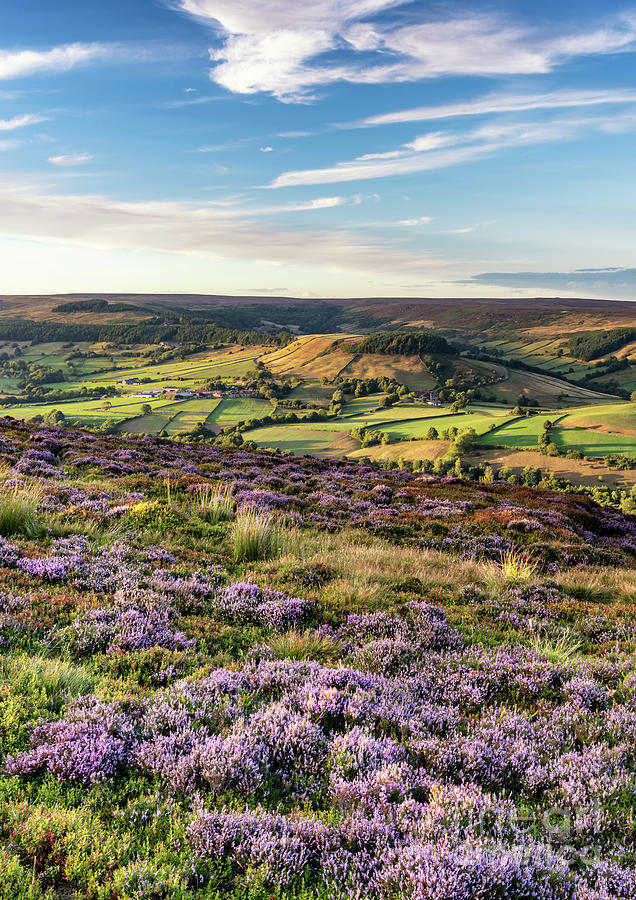 Rosedale From Chimney Bank by Richard Burdon