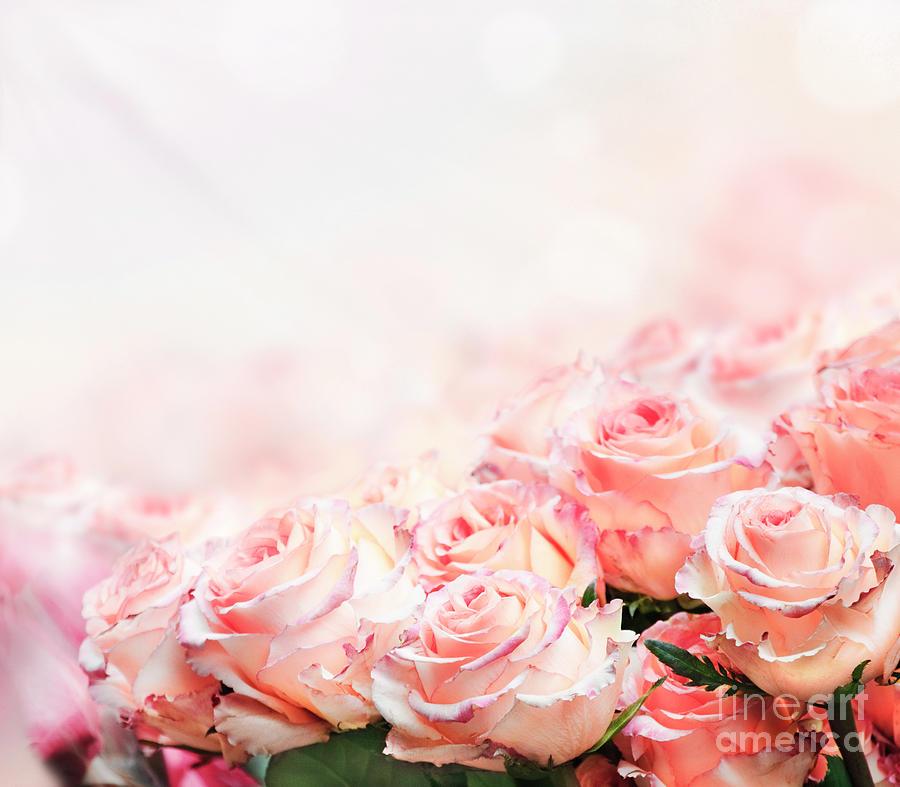 Roses Bouquet by Jelena Jovanovic