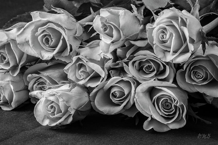 Roses I BW by David Gordon