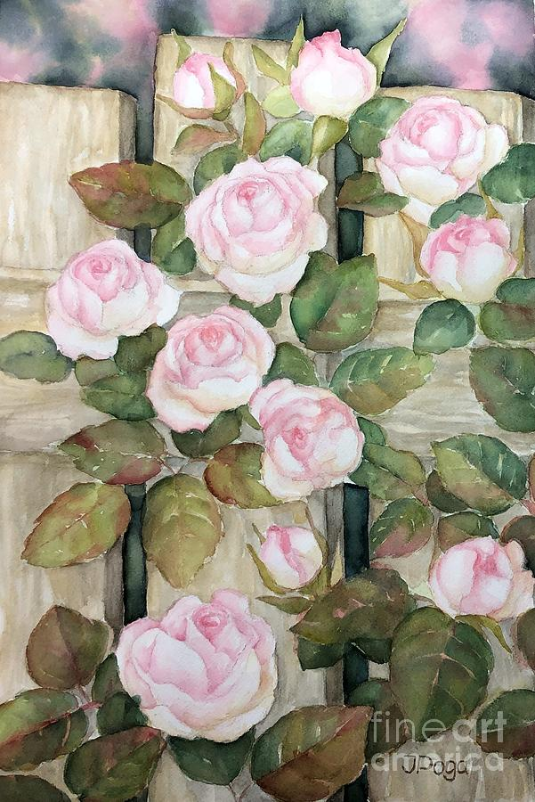 Roses on fence by Inese Poga