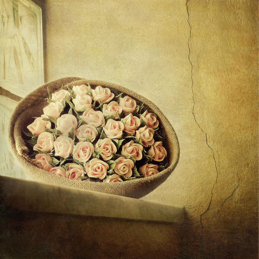 Roses On Window Photograph by Marco Misuri