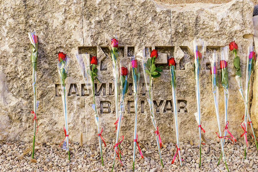 Roses placed by Bar and Bat Mitzvah candidates adorn the Babi Ya by William Kuta