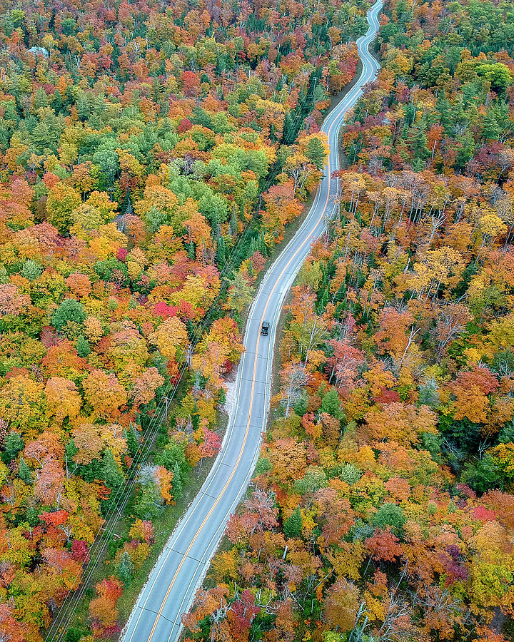 Route 42 Aerial Vertical by Adam Romanowicz