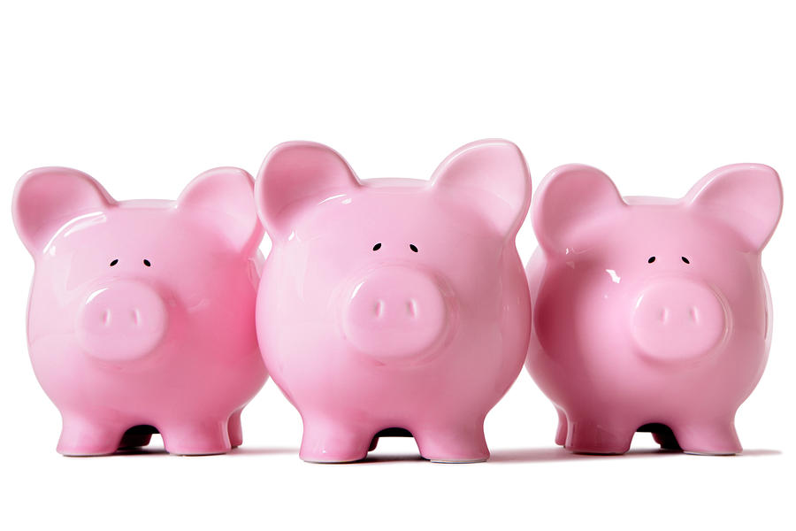 Row Of Pink Piggy Banks Photograph by Hatman12