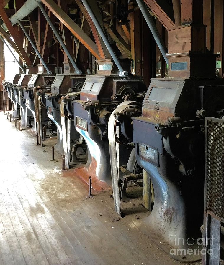 Feed Store Photograph - Row Of Rollers 2 by Megan Cohen