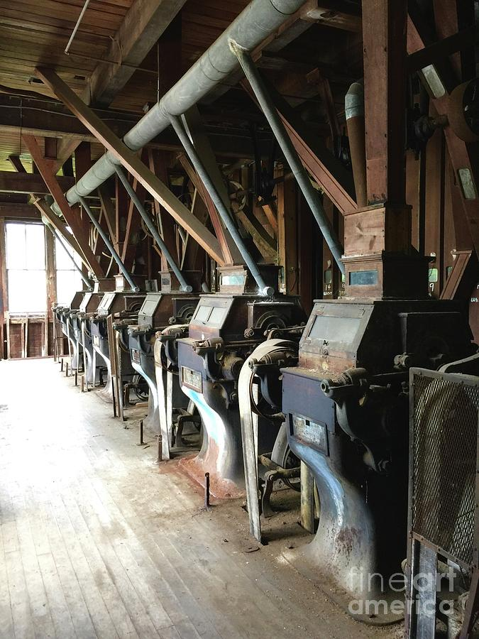 Feed Store Photograph - Row Of Rollers by Megan Cohen