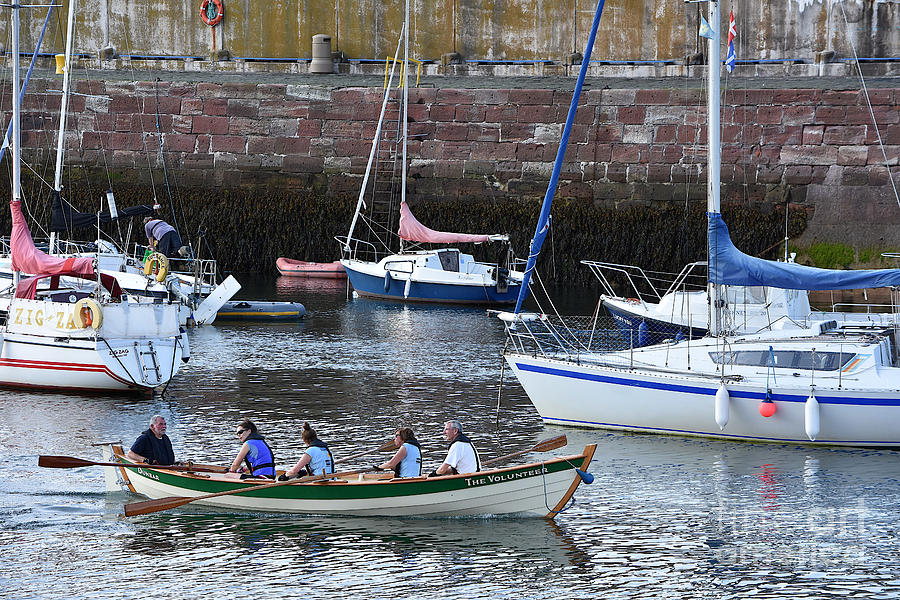 Rowers in Dunbar Harbour by Yvonne Johnstone