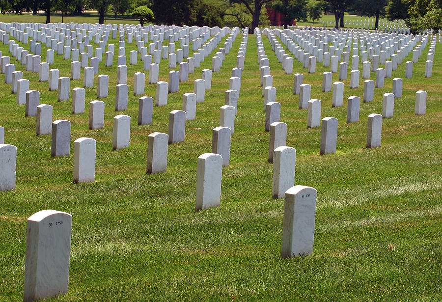 Rows of Headstones by Anthony Jones