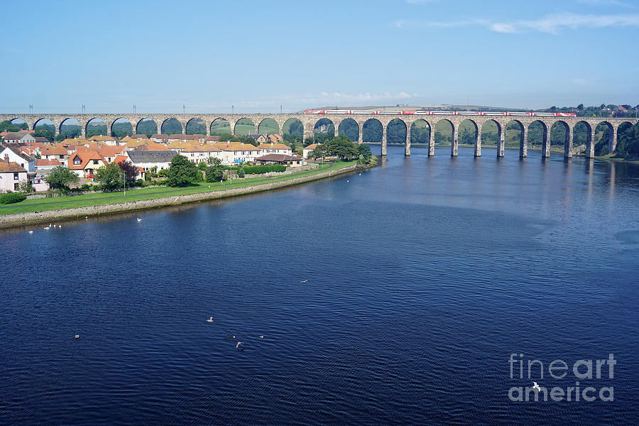 Royal Border Bridge at Berwick upon Tweed by David Birchall