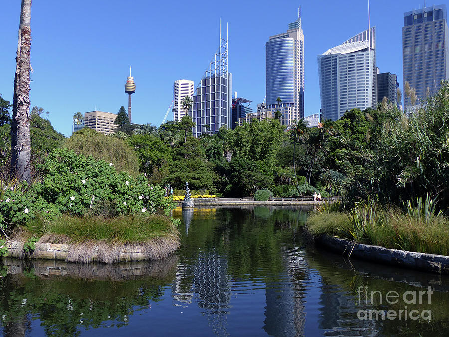 Royal Botanical Garden - Sydney by Phil Banks