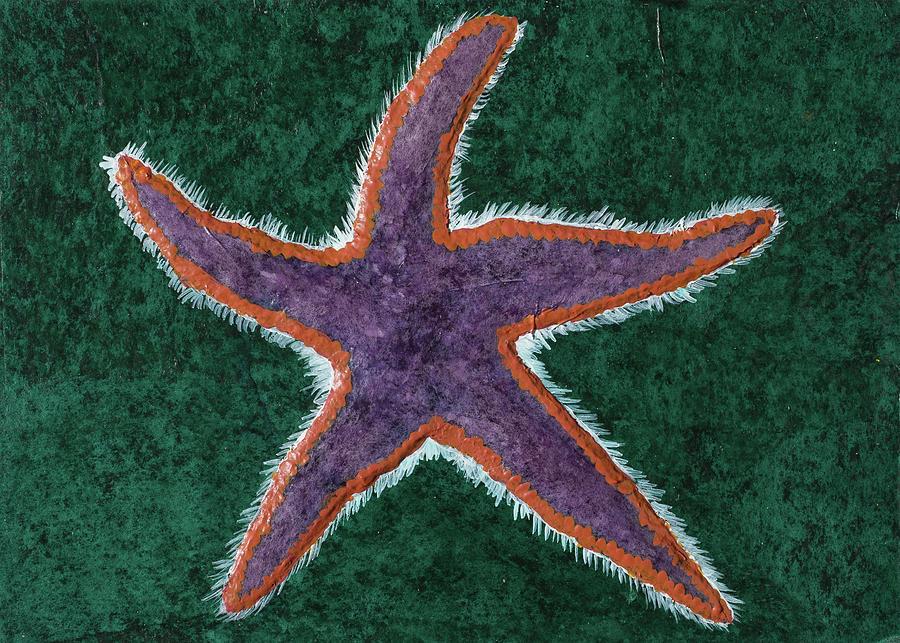 Royal Starfish by Laelia Watt