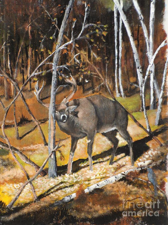Rubbin For the Rut by Jennifer Thomas