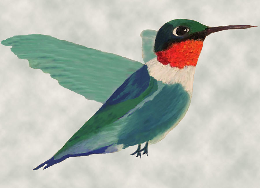 Ruby Throated Hummingbird 1 by Connie Spencer